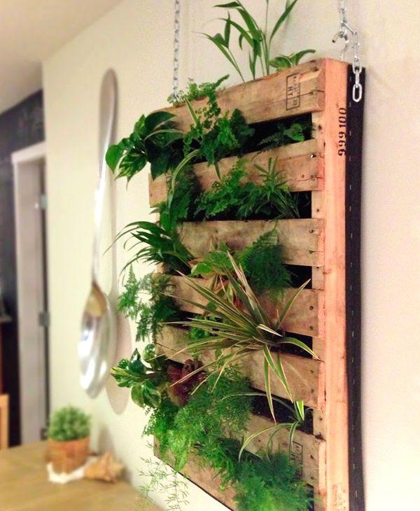 Un jard n dentro de casa con palets i love palets - Palets decoracion jardin ...