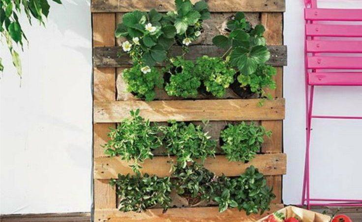 C mo hacer un jard n vertical de palet paso a paso i - Como hacer un jardin vertical de interior ...