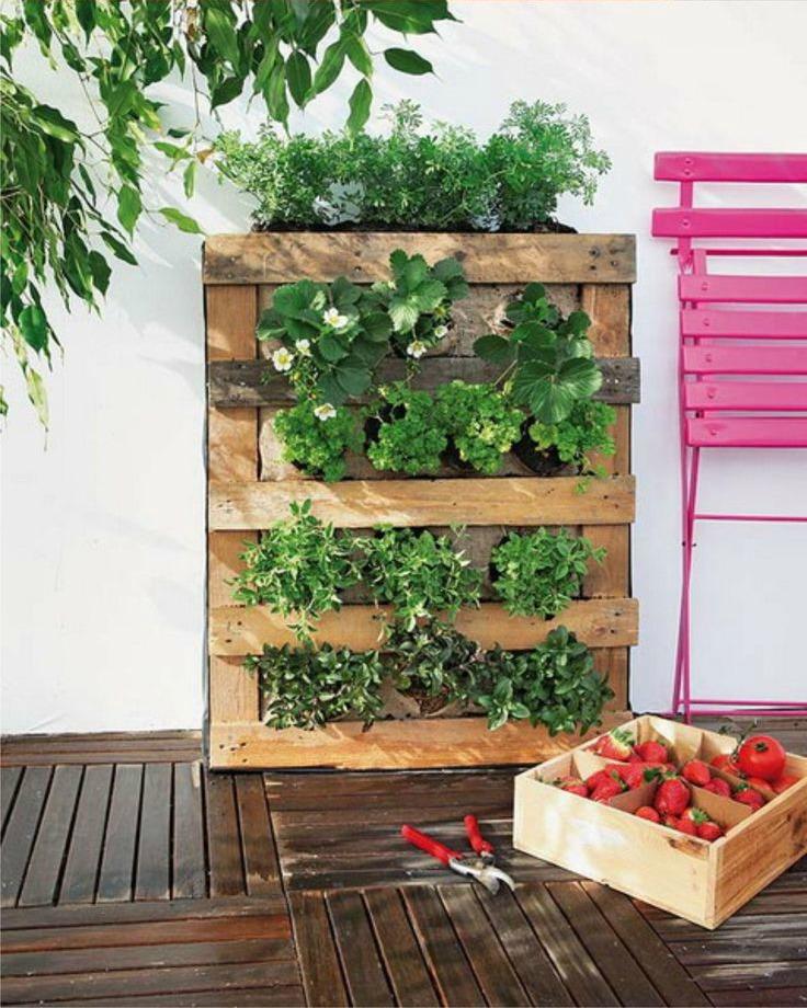 C mo hacer un jard n vertical de palet paso a paso i - Macetas para jardin vertical ...