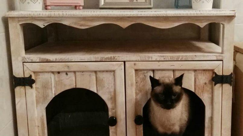 arenero de palets para gatos