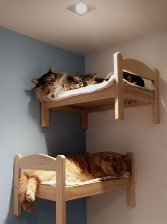 muebles para gatos con palets